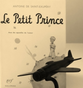 p'tit prince 002